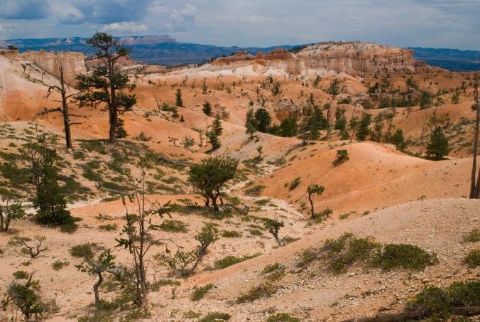 Queens Garden at Bryce Canyon